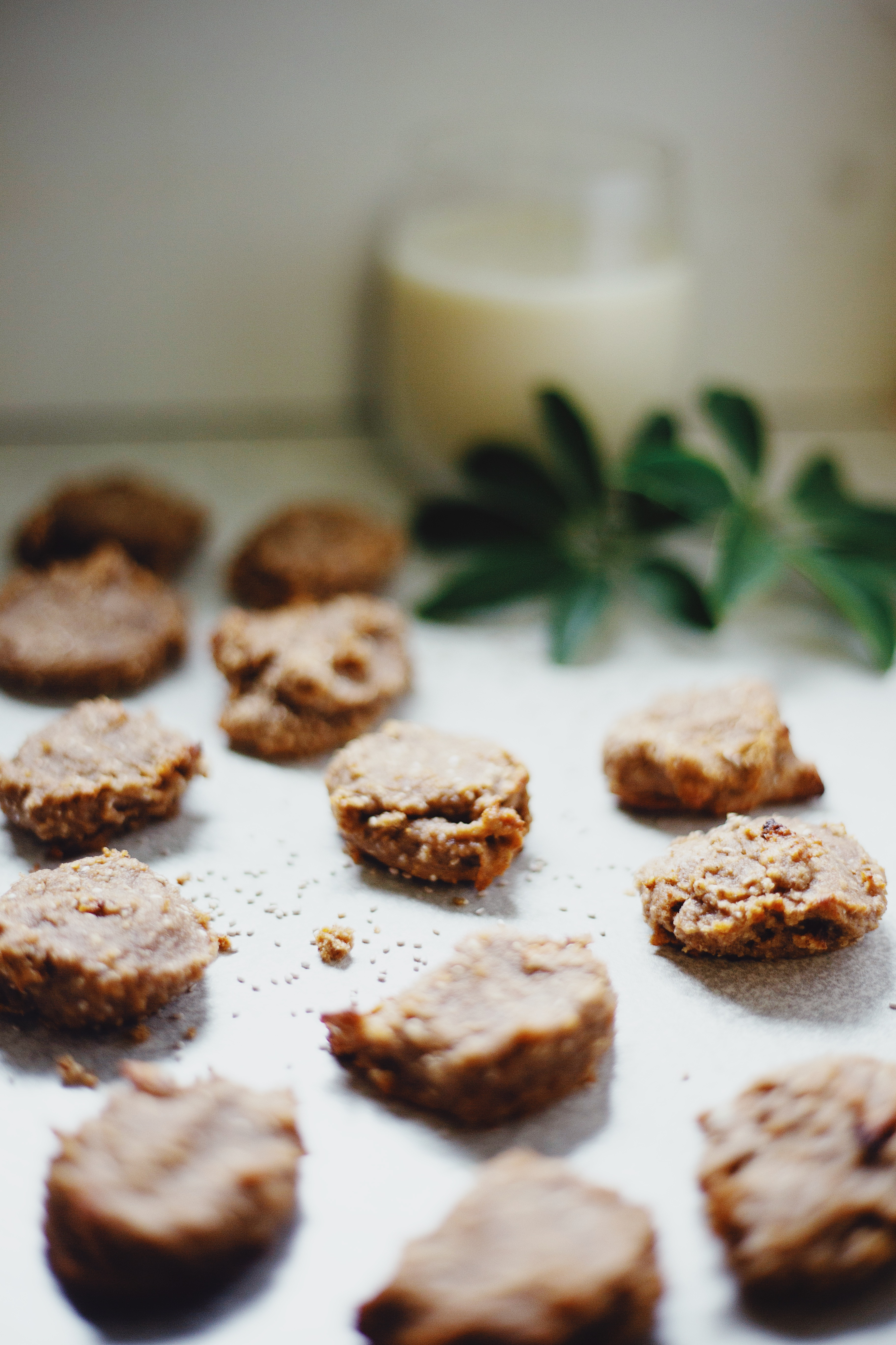 Healthy, Vegan and Gluten Free Chia Cookies Recipe